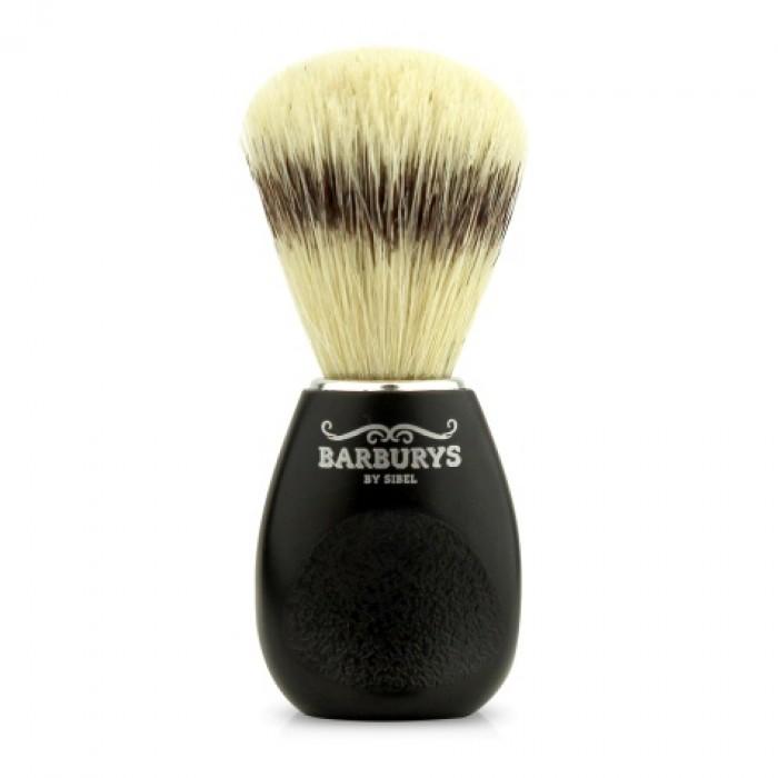 Barburys habemepintsel