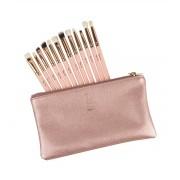 Set of 12 make-up brushes
