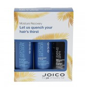 Joico Moisture Recovery Travel Gift Pack